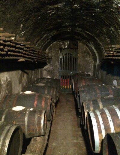 Ancient Winery Tuscany